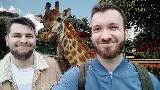 Ласка и Сегал в зоопарке