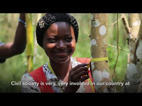 Voices from the Heart of the Forest: Indigenous Peoples and Civil Society Speak About REDD+
