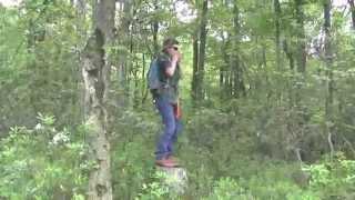 Finding Bigfoot-Spanish.m4v