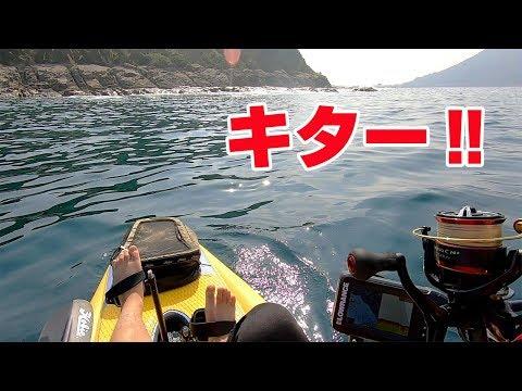 【男二人離島キャンプ#3】夜釣りとカヤック釣行編‼