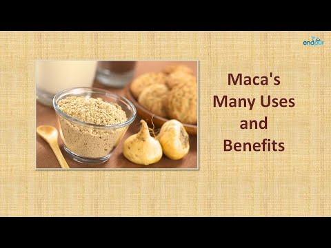 Maca's Many Uses and Benefits | Benefits of Maca