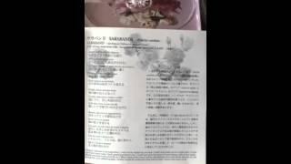 先日のNHKの朝ドラの中で成瀬仁蔵モデルの成澤泉が、カフェで英語で歌う...