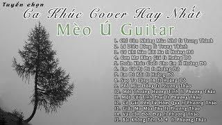 Tuyển Chọn Những Ca Khúc Cover Hay Nhất Mèo Ú Guitar