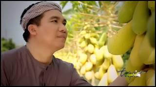 TẤM LÒNG DÂNG CHÚA HÀI NHI - LM JB NGUYỄN SANG