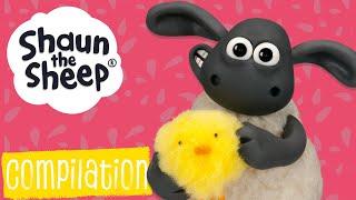 Эпизоды 26-30 сборник S1 | Барашек Шон [Shaun the Sheep S1 Compilation]