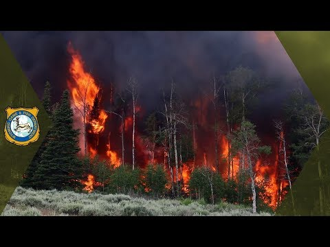 Wyoming Range Habitat Treatment