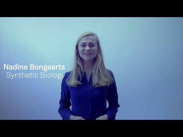 SU Brussels Summit: Introducing Nadine Bongaerts