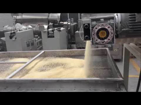 Mexico Clients Customized Bread Crumbs Extruder Making Machine -- The Newest Technique