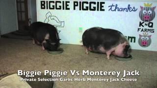 Biggie Piggie Vs Private Selection Garlic Herb Monterey Jack Cheese V2.0.com
