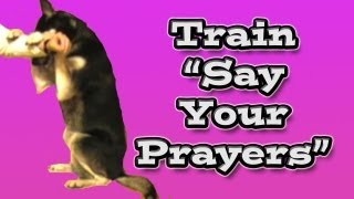 'how To' Train The Dog Trick - Say Your Prayers