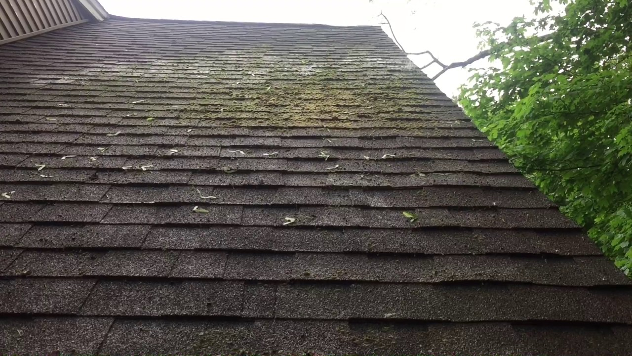 Roof Cleaning Part I Soft Cleaning Moss Mildew And