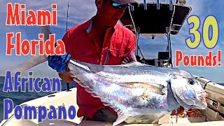 30 Pound African Pompano Fishing Miami Florida