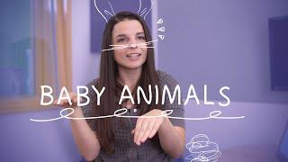 Weekly English Words with Alisha - Baby Animals!