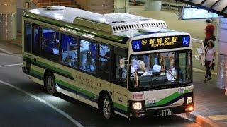 東京ベイシティバス 走行音【1141:SKG-LR290J2 いすゞ・エルガミオ】08/17/2016