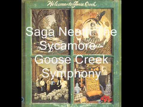 Goose Creek Symphony - Saga Neath The Sycamore