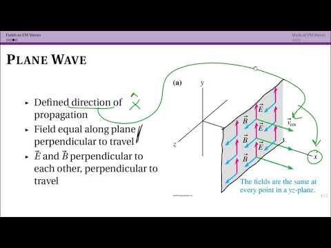 Fields in EM Waves (31.5)