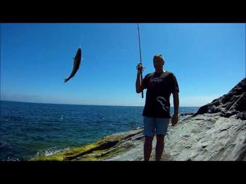 морская рыбалка с берега 2018