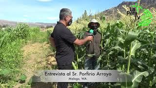 Entrevista Porfirio Arroyo
