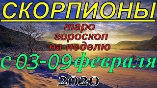 ГОРОСКОП СКОРПИОНЫ С 03 ПО 09 ФЕВРАЛЯ.2020