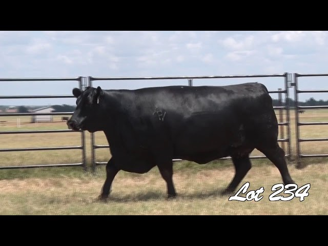 Pollard Farms Lot 234