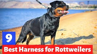 What are the 7 Best Dog Harnesses for Rottweilers? Which one is for you?