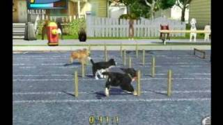 Petz Sports: Dog Playground (Wii) Race