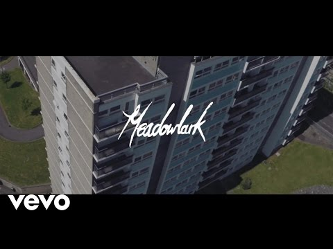 Meadowlark - Fly
