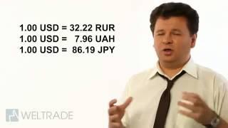 Инвестиции на год.  Форекс для начинающих Сколько можно заработать по нашей стратегии торговли