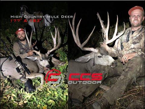 """177""""-&-183""""-wyoming-high-country-mule-deer-hunt-(2019-diy)-w/-pack-goats,-6.5-creedmoor-640-&-200yds"""