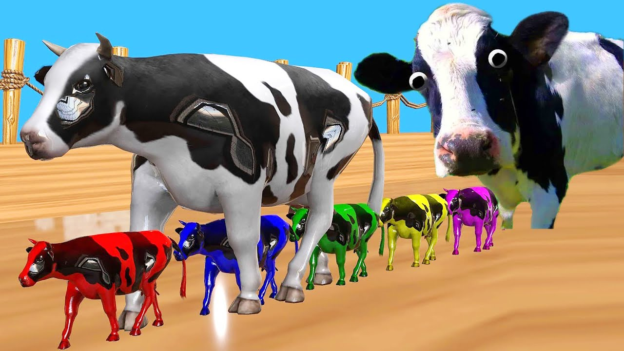 Download FUNNY COW DANCE 40 │ Cow Song & Cow Videos 2021
