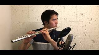 The Chainsmokers Coldplay Something Just Like This FLUTE COVER.mp3