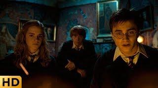 Гарри, Гермиона и Рон говорят с Сириусом из камина. Гарри Поттер и Орден Феникса.