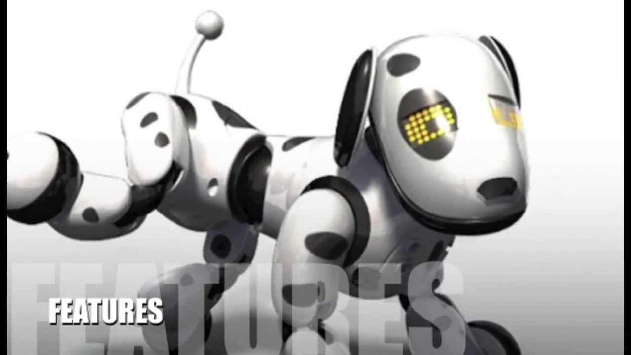 Zoomer Robot Dog Review Youtube