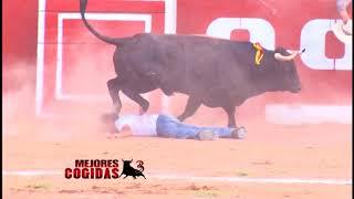 Bullfighting Festival Peruvian Best Funny Videos #6