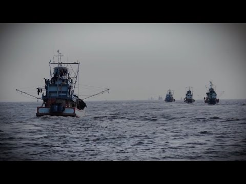Seafood Business for Ocean Stewardship
