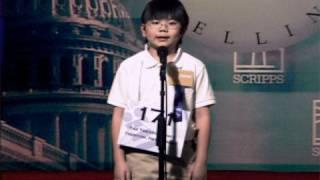 Spelling Bee | Hannah Stocking