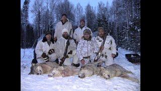 Охота на волка окладом 2020