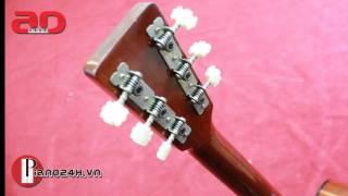Guitar Acoustic Hotta 100 | Bán Đàn Guitar Acoustic Hotta 100 | Piano24h.vn