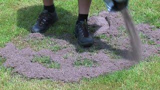Pflegeanleitung: Ausbesserung von Rasenflächen