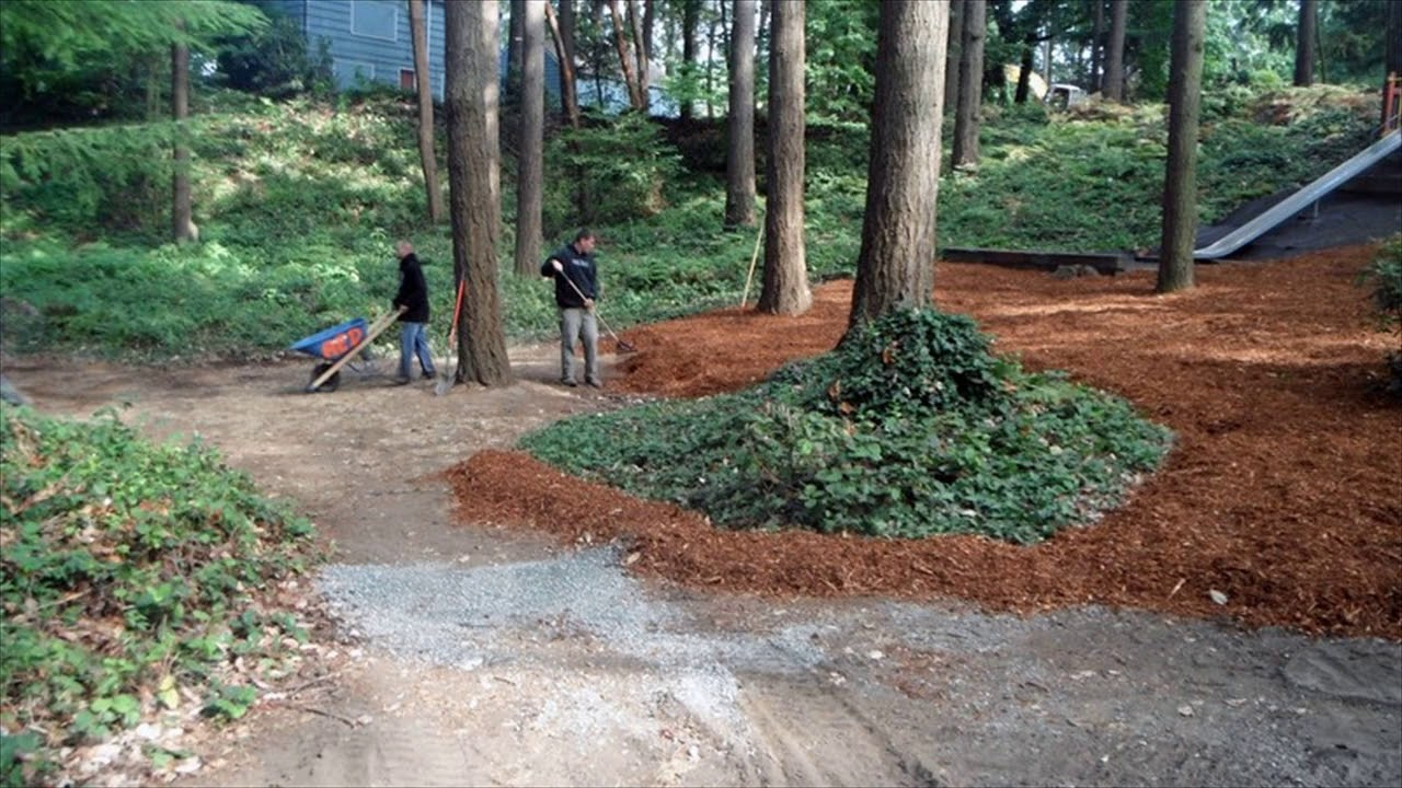 Landscaping ideas for wooded area youtube for Ideas for landscaping large areas