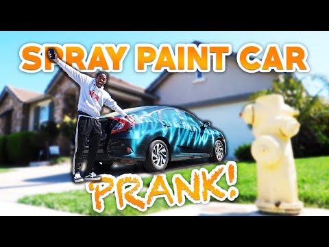 SPRAY PAINTING ALEXYS BRIANNA'S CAR PRANK!!!😂