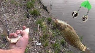 Рыбалка весной / Фидерная кормушка и поплавочная удочка