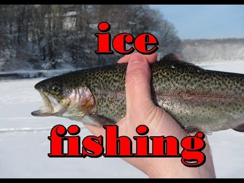 *UNBELIEVABLE NON-STOP Trout Action* DOWDY LAKE, COLORADO #5280adventures *icefishing