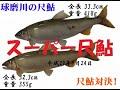 【球磨川遠征2017】尺鮎釣り2017