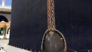 Rukn-e-Yamani.wmv
