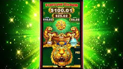 Fortune Charm™  Video Slots by IGT - Game Play Video
