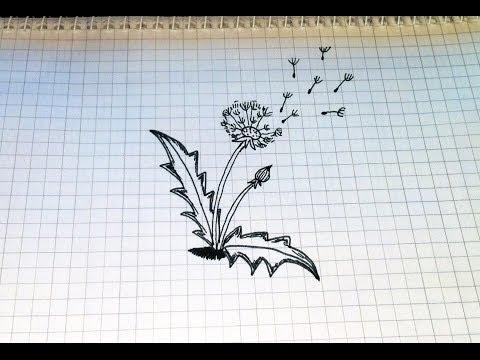 Простые рисунки #105  Как нарисовать Одуванчик.