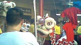 The lion dance performance at the Chinese Cultural Plaza.