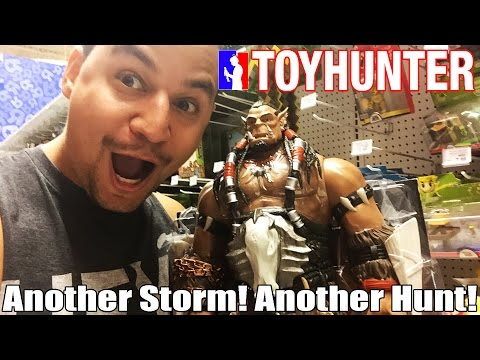 Toy Hunting: Another Storm! Another Toy Hunt!