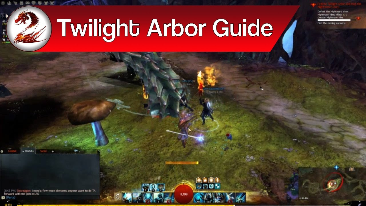 guild wars 2 for beginners
